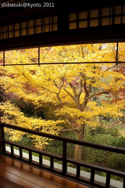 20111130_Kyoto-39_八瀨琉璃光院_1.JPG
