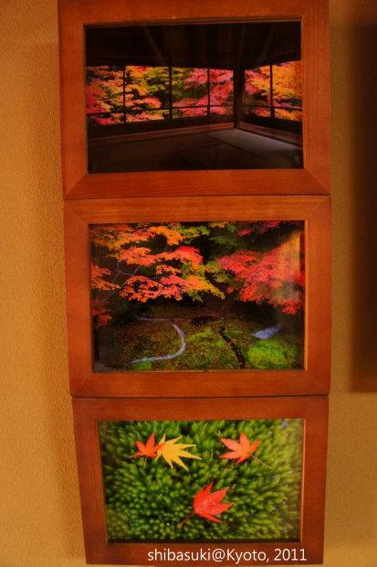 20111130_Kyoto-41_八瀨琉璃光院_1.JPG
