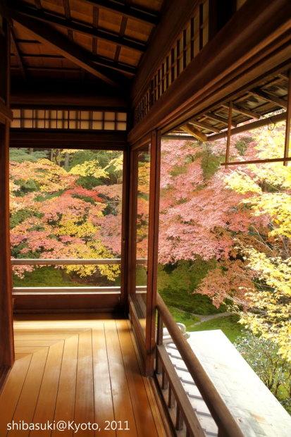 20111130_Kyoto-44_八瀨琉璃光院_1.JPG