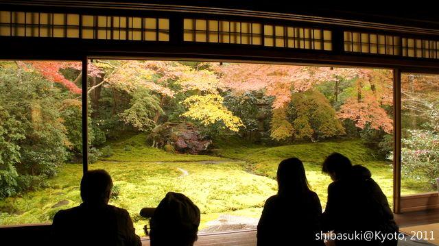 20111130_Kyoto-53_八瀨琉璃光院_1.JPG