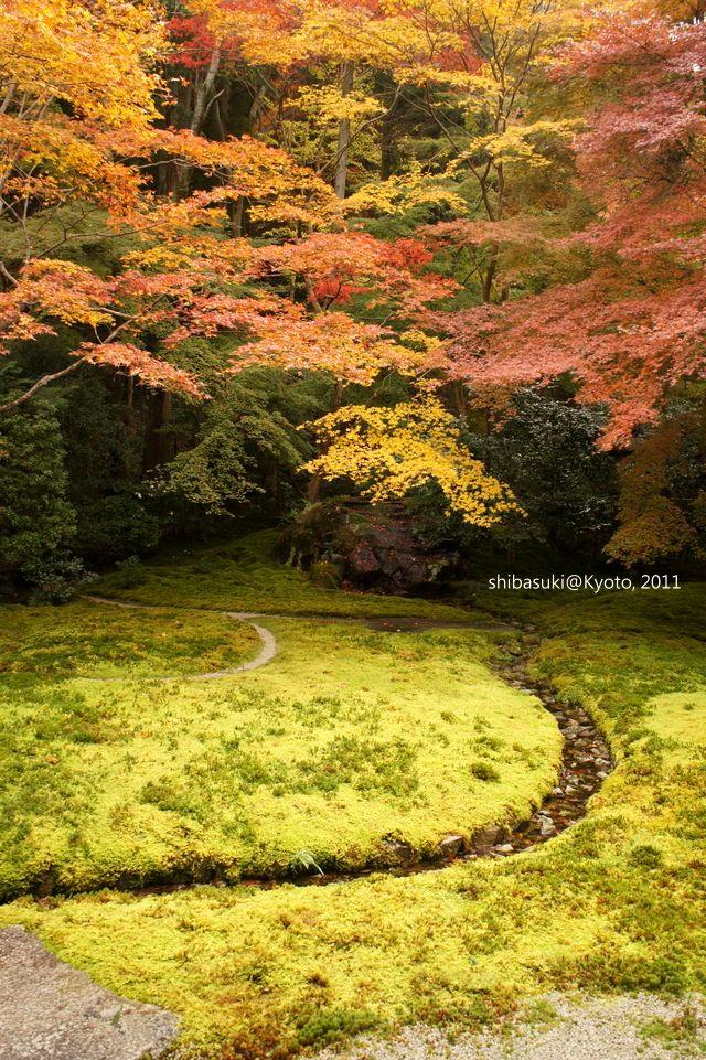 20111130_Kyoto-56_八瀨琉璃光院_1.JPG