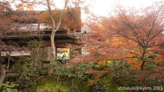 20111130_Kyoto-62_八瀨琉璃光院_1.JPG