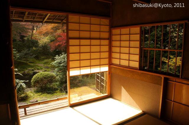 20111130_Kyoto-64_八瀨琉璃光院_1.JPG
