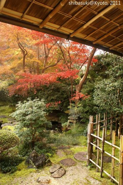 20111130_Kyoto-65_八瀨琉璃光院_1.JPG