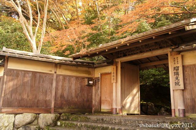 20111130_Kyoto-81_八瀨琉璃光院_1.JPG