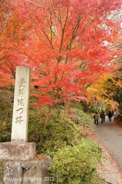 20111130_Kyoto-161_曼殊院門跡_1.JPG