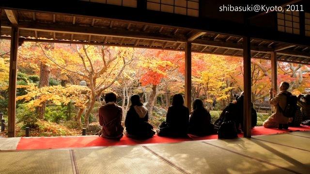 20111130_Kyoto-176_圓光寺_1.JPG