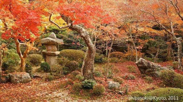 20111130_Kyoto-180_圓光寺_1.JPG
