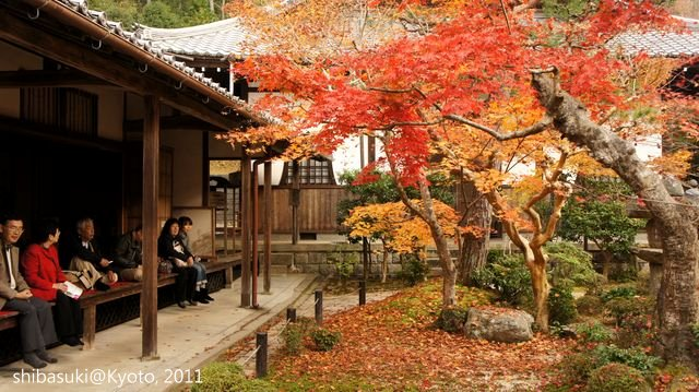 20111130_Kyoto-182_圓光寺_1.JPG