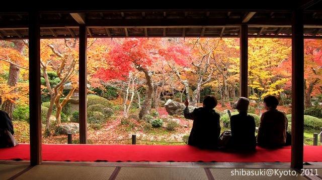20111130_Kyoto-185_圓光寺_1.JPG