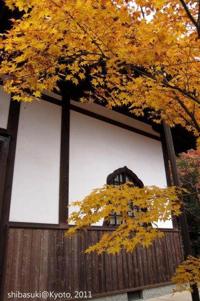 20111130_Kyoto-192_圓光寺_1.JPG