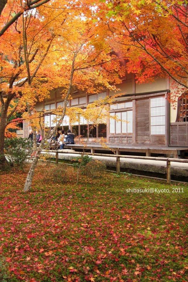 20111130_Kyoto-204_圓光寺_1.JPG
