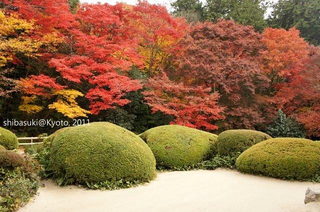 20111130_Kyoto-214_詩仙堂_1.JPG