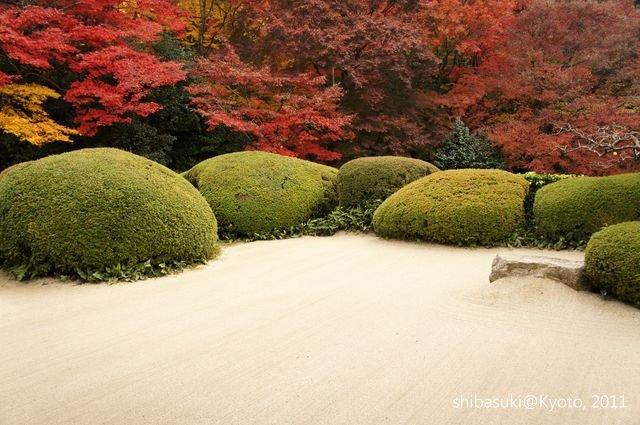 20111130_Kyoto-216_詩仙堂_1.JPG