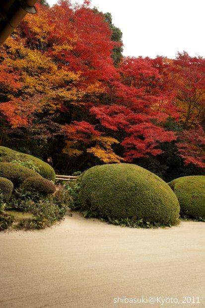 20111130_Kyoto-217_詩仙堂_1.JPG