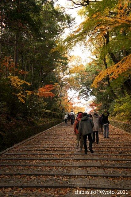 20111204_Kyoto-21_光明寺_1.JPG