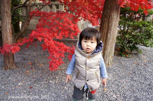 20111204_Kyoto-44_光明寺_1.JPG