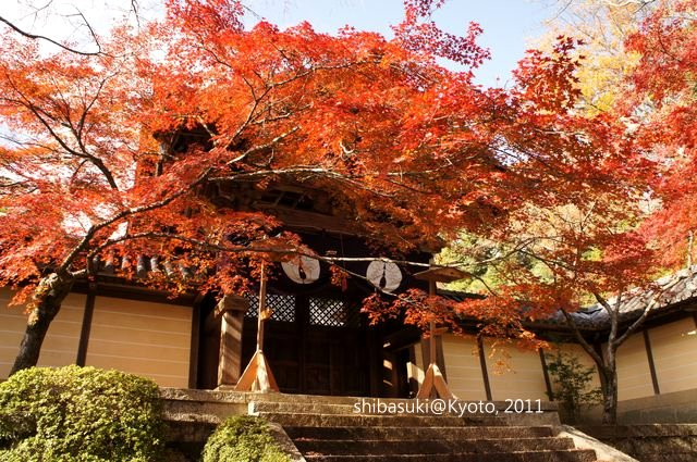 20111204_Kyoto-48_光明寺_1.JPG