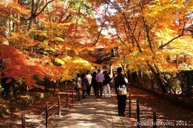 20111204_Kyoto-77_光明寺_1.JPG