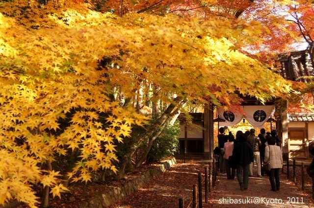 20111204_Kyoto-87_光明寺_1.JPG
