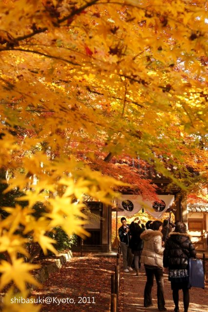 20111204_Kyoto-88_光明寺_1.JPG