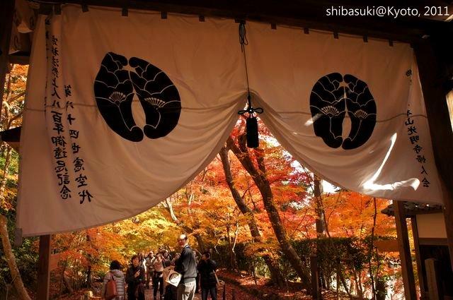20111204_Kyoto-121_光明寺_1.JPG