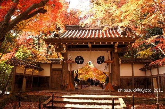 20111204_Kyoto-131_光明寺_1.JPG