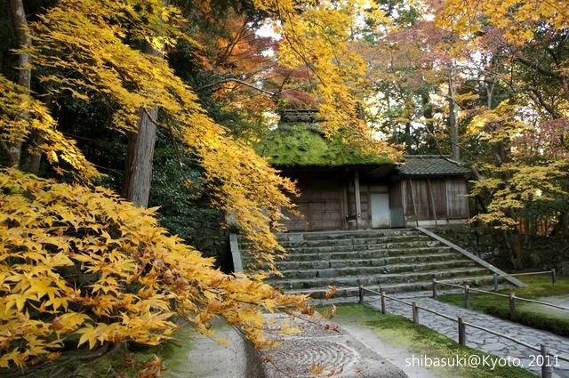 20111204_Kyoto-164_法然院_1.JPG