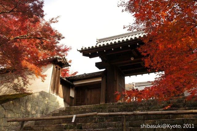 20111130_Kyoto-115_曼殊院門跡_1