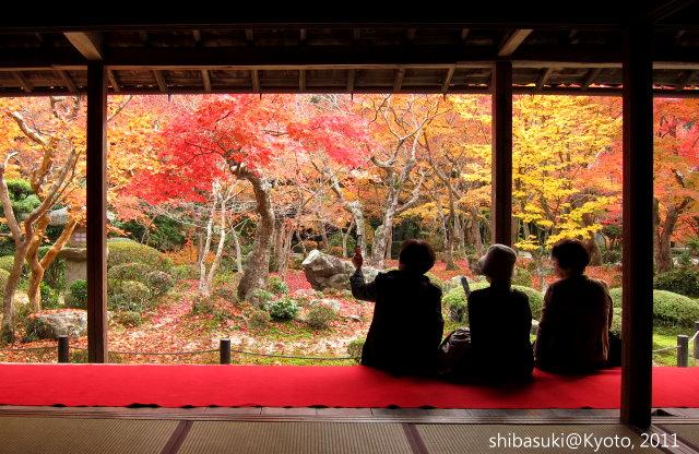 20111130_Kyoto-185_圓光寺_1