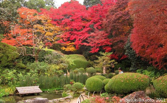 20111130_Kyoto-249_詩仙堂1