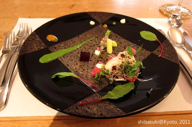 20111201_Kyoto-94_蒼_1.JPG