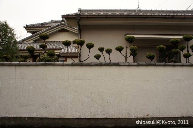 20111202_Kyoto-4_毘沙門堂_1.JPG