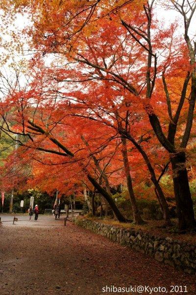 20111202_Kyoto-9_毘沙門堂_1.JPG