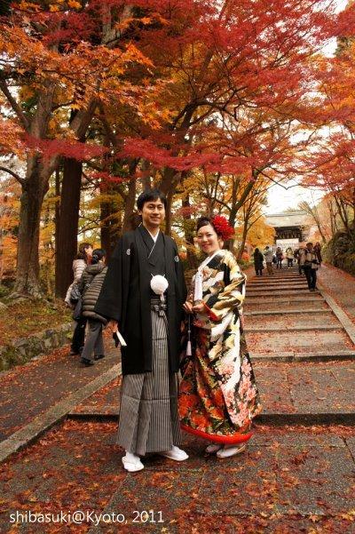 20111202_Kyoto-26_毘沙門堂_1.JPG
