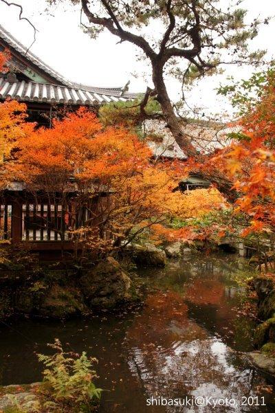 20111202_Kyoto-58_毘沙門堂_1.JPG