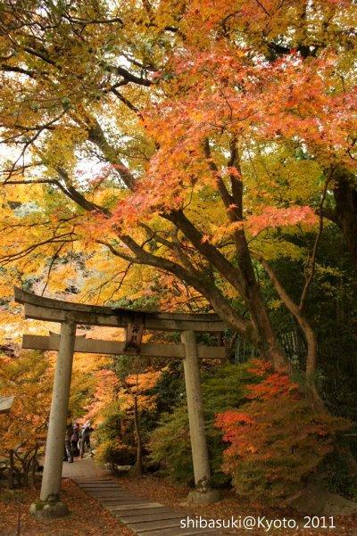 20111202_Kyoto-62_毘沙門堂_1.JPG