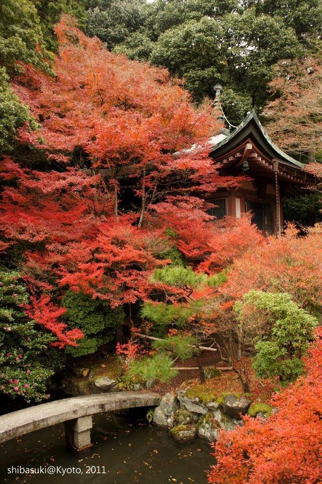 20111202_Kyoto-64_毘沙門堂_1.JPG