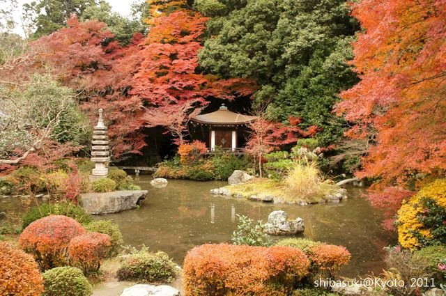 20111202_Kyoto-76_毘沙門堂_1.JPG