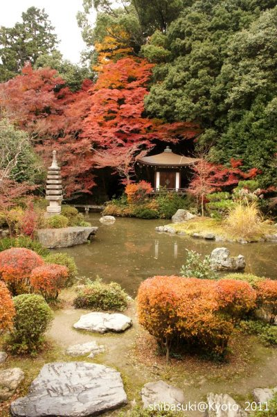 20111202_Kyoto-78_毘沙門堂_1.JPG