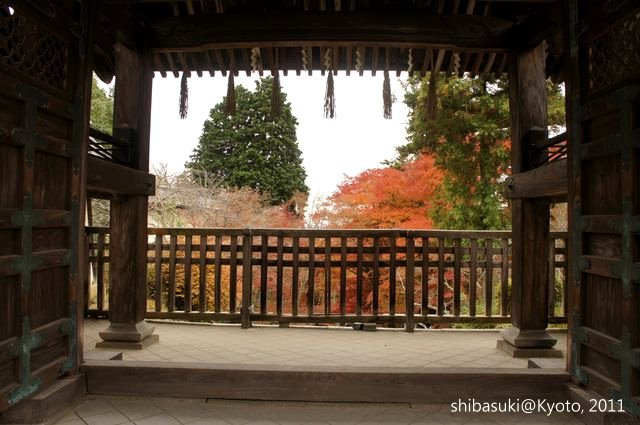 20111202_Kyoto-85_毘沙門堂_1.JPG
