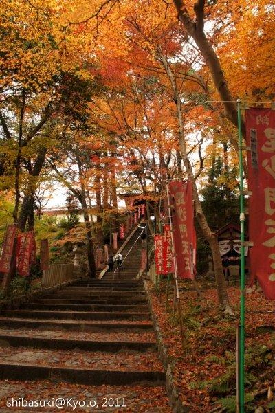 20111202_Kyoto-101_毘沙門堂_1.JPG