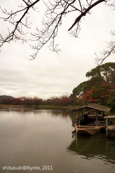 20111202_Kyoto-125_大澤池_1.JPG