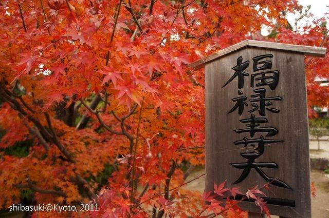 20111202_Kyoto-151_天龍寺寧壽院_1.JPG