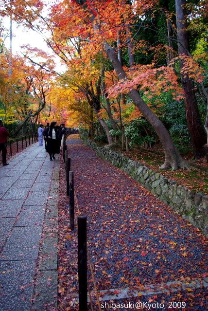 20091128_Kyoto-462_光明寺s