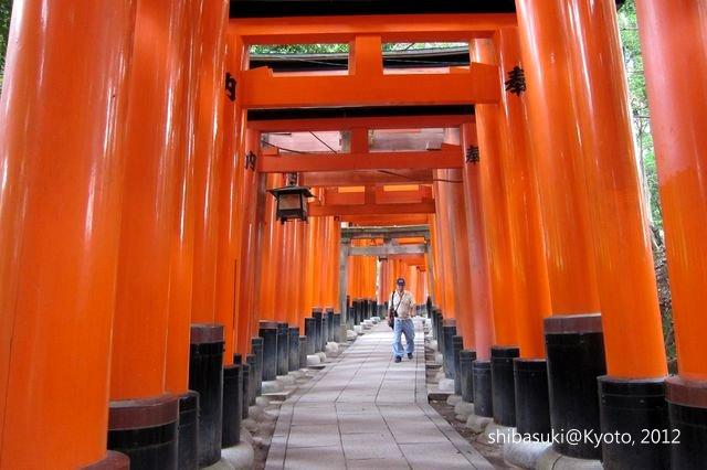 20120628_Kyoto-27_伏見稻禾大社_1