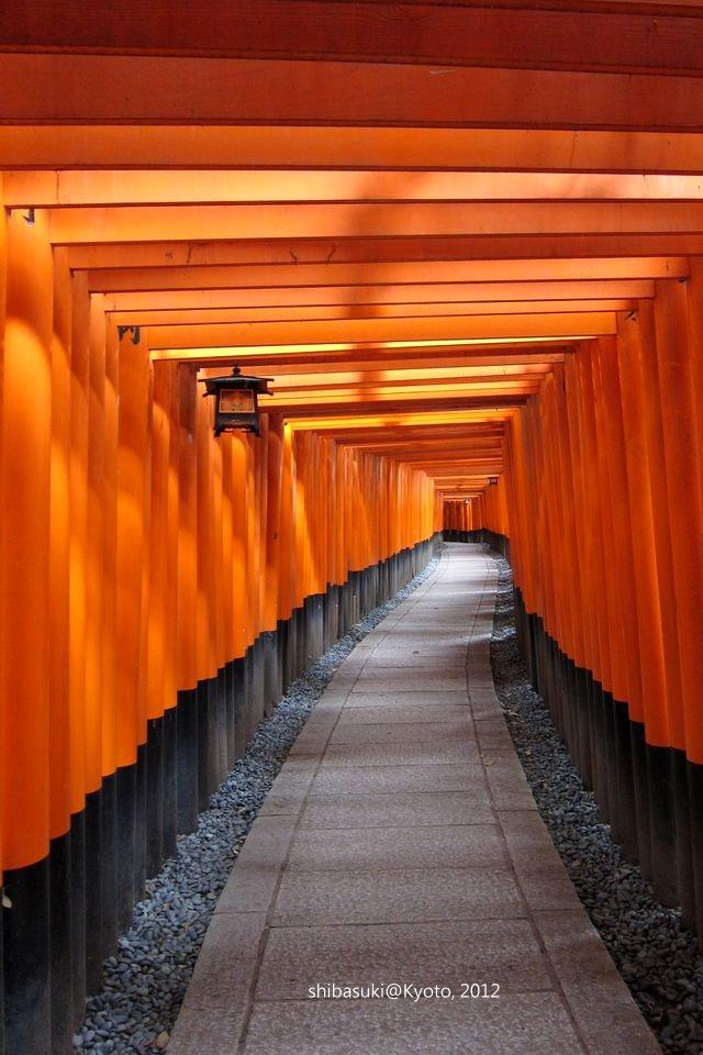20120628_Kyoto-41_伏見稻禾大社_1