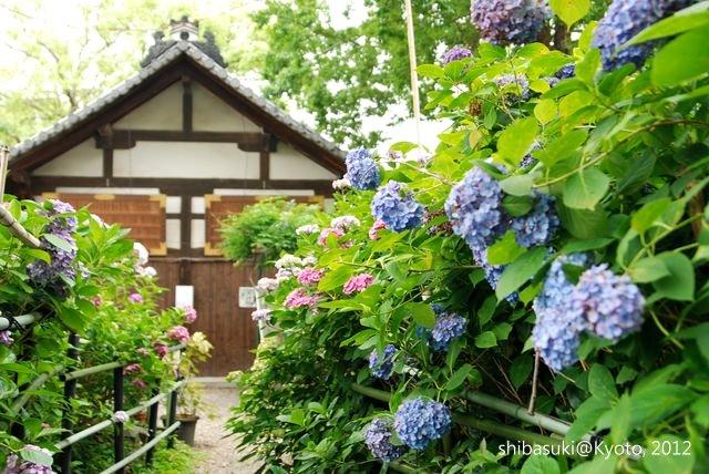 20120628_Kyoto-123_藤森神社_1