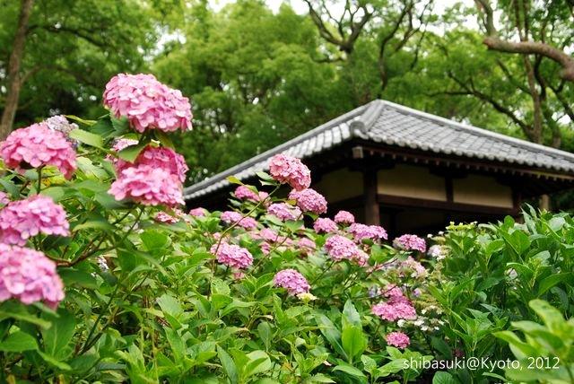 20120628_Kyoto-142_藤森神社_1