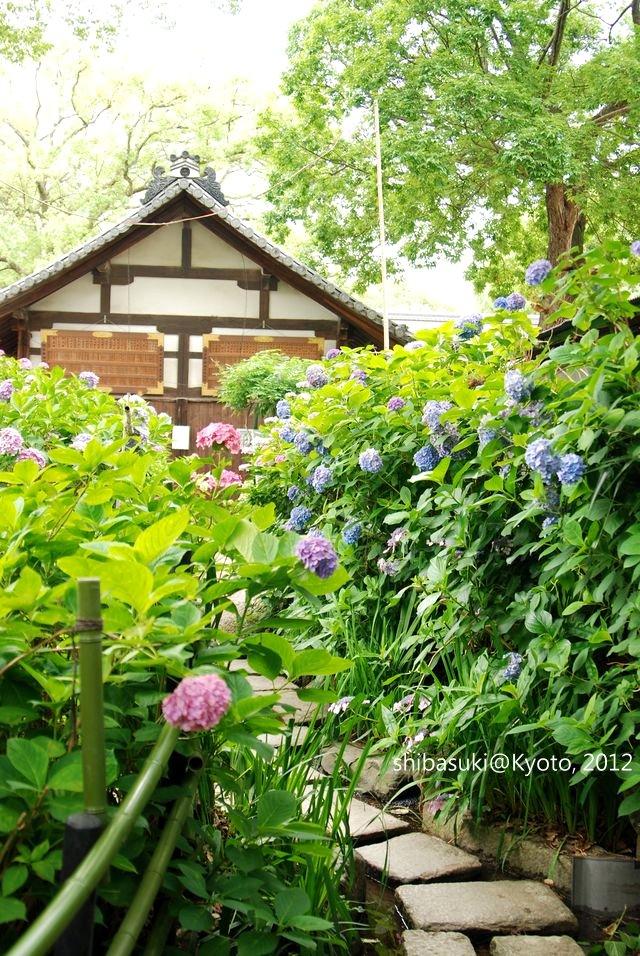 20120628_Kyoto-169_藤森神社_1